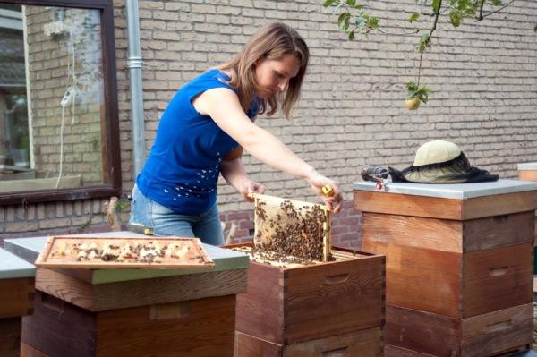 monique quaedackers bijenbehouderij ambacht honing maken